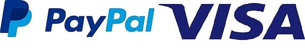 Image: PayPal and Visa