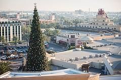 在Citadel Outlets的假期2020开始于11月14日开始圣诞树灯