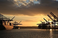 Port of Los Angeles, Oakland Report Record Cargo Surge