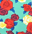 Cinergy Textiles Inc. #RSJ-MX6333MF