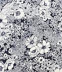 Robert Kaufman Fabrics #SRKX-17230-62