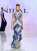 Nidal Nouaihed