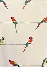 Robert Kaufman Fabrics  Sevenberry Island Paradise #SB-4B2D1-1