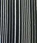 Silver Vision Textiles Bamboo/Cotton/Spandex #79512PH