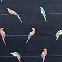 Robert Kaufman Fabrics  #SB-4132D1-5