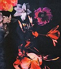 Miroglio Textile/Renovazio LLC