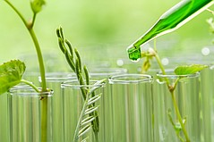 Devan Chemicals Adds to its Line of Bio-Based products